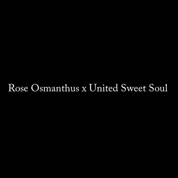 Rose Osmanthus x United Sweet Soul